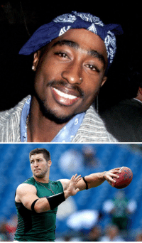You can only bring back one: RT for Tupac Like for Tim Tebow's NFL career: 卿 You can only bring back one: RT for Tupac Like for Tim Tebow's NFL career