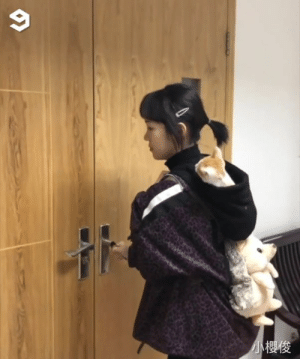 kitten carrier comes with a built-in toy.: 小櫻俊 kitten carrier comes with a built-in toy.
