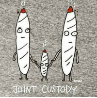 joint custody: 心  JO INT CUSTOD joint custody