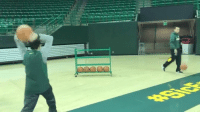 Sports, Baylor, and Baylor Basketball: 皿 Baylor's basketball managers proved trick-shot vids aren't just for the players (via AllinBUManagers-Twitter)