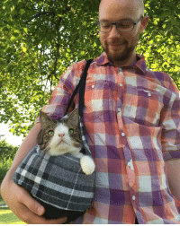 Memes, Tbt, and Summer: 空  5>mぞ I miss summer and warm walks outside with my dad in my PAWsome carrier 😸☀️ tbt throwback throwbackthursday misssummer love catdad catstagram thedailykitten