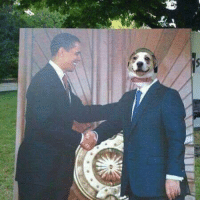 """Dank, Obama, and Good: 藄  岠ー广  舁 """"Mr Obama I brought along a good boy to assist my point"""" """"Who's the good boy?"""" *tail wagging* """"me"""""""