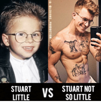 "Doppelganger, Memes, and Stuart Little: 雄  STUART  STUART NOT  SO LITTLE  OE  NL  Rn  AL  UO  TS  10: @LEGIONS-PRODUCTION  AT  UT  TI  SL 🔥😳WAIT! ... STUART LITTLE? Founder 👉: @king_khieu. We found his doppelgänger. Thoughts? 🤔Opinions? What do you guys think? COMMENT BELOW! Athletes. Left: @jonathanlipnicki. Right: @bohmdog. TAG SOMEONE who needs to lift! _________________ Check out our principal account: @fitness_legions for the best fitness and nutrition information! Like✅ us on Facebook👉: ""Legions Production"" for a chance at having a shoutout. @legions_production🏆🏆🏆. . . . . . . . run running runner athlete athletes athletic sport sports calves quadzilla striations quads quad quadriceps hamstrings glutes backworkout back backday chest chestday chestworkout traps delts shoulder shoulders pecs shreds shred shredz"