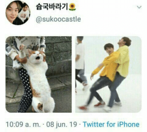 #bts #suga #jungkook: 슘국바라기오  @sukoocastle  Melarty  10:09 a. m. 08 jun. 19 Twitter for iPhone #bts #suga #jungkook