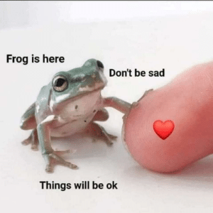 🐸 ❤️ everything will be ok: 🐸 ❤️ everything will be ok