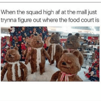 Struggle 😩😂😂: When the squad high af at the mall just  trynna figure out where the food court is  MCDOf Struggle 😩😂😂