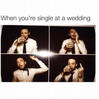 Omg having no plus one is so much fun! Check out the link in the bio to read 10 thoughts you have when you're single at a wedding! Betches.co-singlewed: When you're single at a wedding Omg having no plus one is so much fun! Check out the link in the bio to read 10 thoughts you have when you're single at a wedding! Betches.co-singlewed