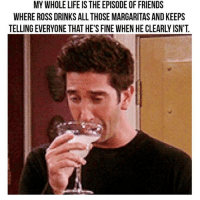 Ross is boss!!! (@boywithnojob): MY WHOLE LIFE IS THE EPISODE OF FRIENDS  WHEREROSS DRINKS ALL THOSE MARGARITAS AND KEEPS  TELLING EVERYONE THAT HE'S FINE WHEN HE CLEARLYISN'T Ross is boss!!! (@boywithnojob)