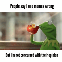 Or something like that: People say use memes wrong  But I'm not concerned with their opinion Or something like that