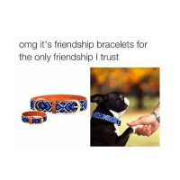 Cute, Omg, and Girl Memes: omg it's friendship bracelets for  the only friendship I trust cute