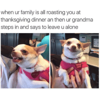 That face tho 🙃 (@splurt): when ur family is all roasting you at  thanksgiving dinner an then ur grandma  steps in and says to leave u alone  LILY LU That face tho 🙃 (@splurt)