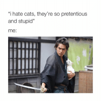 """Cats, Pretentious, and Girl Memes: """"i hate cats, they're so pretentious  and stupid""""  me:"""