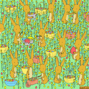 Easter, Memes, and Book: 0  0  0  0  0  dudolf.com The rabbits are getting ready for Easter!  🐤 Can You find a baby chicken? 🐤  SOLUTION: https://bit.ly/2UII5T6 (at the bottom of the page)  🐰 Check out my Springtime-themed seek-and-find book at https://amzn.to/2McXapj 🐰📗  http://dudolf.com