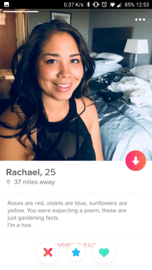 Say no more.: 0.37 K/s  0  85% 12:53  Rachael, 25  37 miles away  Roses are red, violets are blue, sunflowers are  yellow. You were expecting a poem, these are  just gardening facts  I'm a hoe.  MMF RAC Say no more.