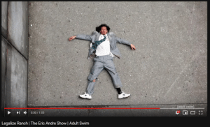 "Tumblr, youtube.com, and Adult Swim: +  0:50 / 1 :05  Legalize Ranch | The Eric Andre Show | Adult Swim simtunes:  youtube took down all annotations so now all the eric andre show clips that used to end with linked annotations like ""subscribe to adult swim"" and stuff just end in this 15 second silent shot of eric lying on the ground dead"