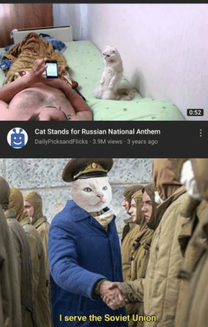 Catzakov: 0:52  Cat Stands for Russian National Anthem  DailyPicksandFlicks 3.9M views 3 years ago  I serve the Soviet Union Catzakov