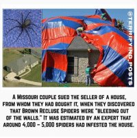 "Being Alone, Creepy, and Life: 0  A MISSOURI COUPLE SUED THE SELLER OF A HOUSE,  FROM WHOM THEY HAD BOUGHT IT, WHEN THEY DISCOVERED  THAT BROWN RECLUSE SPIDERS WERE ""BLEEDING OUT  OF THE WALLS."" IT WAS ESTIMATED BY AN EXPERT THAT  AROUND 4,000 5,000 SPIDERS HAD INFESTED THE HOUSE. WHY IS BLACK AND WHITE SO CREEPY? - SUBMITTED BY LUKKYNUMBER • Did you ever notice that black & white movies are much creepier, in a way, than modern-day color films? Not more horrific, per se, as sheer terror can be brought on by graphic imagery, modern special effects, and myriad lighting tricks that are readily available in today's movies. But there's just something very unnerving about old Twilight Zone shows, for instance, with the grainy white & charcoal filling up the screen. And don't get me started about the creepy music from back then! But the way some movies from the 40s & 50s look, they're just very... unsettling. Part of the reason why is because everything in them is so foreign. People dressed different back then, and talked different; they were scared differently too. The horror movies from the '30s are an entirely different genre than horror from the '50s. Have you seen the early zombie flicks, like Night of the Living Dead? You can't tell me that the black & white isn't creepy shit. The original Psycho? Blood splattered on the wall in that film puts me on edge in a unique way, because it's a malignant black coating, instead of the red that we know blood to look like in real life. Do you know why black & white movies are truly scarier though? Distraction, or lack thereof. In modern cinema, there are literally thousands of different colors, shades, & combinations to distract your eye. You don't realize it but our eyes are constantly darting back and forth all over the screen, so even the most hellish monster is only capturing PART of our attention. The rest of our eyeballs are glued to the wallpaper in the background, the table in the foreground, etc. In a black & white picture, we are almost watching a blank slate of imagery. So the slightest movement of the monster, we see. The way the protagonist gingerly creeps down a dark staircase, we see her and her alone. We aren't distracted by brilliant lights and colors, so we feel a different kind of primal fear than what we feel watching in color. Distraction is a tool. While you've been reading my drivel, did you even notice my footsteps go into your child's bedroom?"