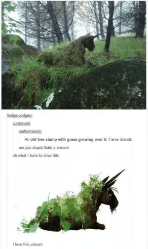 An old tree stump: 0  cuntravoid  malformalady:  An old tree stump with grass growing over it, Faroe Islands  are you stupid thats a unicorn  oh what I have to draw this  I love this unicorn An old tree stump