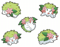 Day 1 - Your favorite Pokémon    Day 2 - Your least favorite Pokémon   Day 3 - A Pokémon that makes you smile   Day 4 - A Pokémon that makes you frown    Day 5 - A Pokémon that reminds you of your best friend    Day 6 - A Pokémon that reminds you of yourself    Day 7 - A Pokémon that is your guilty pleasure   Day 8 - A Pokémon that you know everything about    Day 9 - A Pokémon that you wish was your friend    Day 10 - A Pokémon that you wish you could be    Day 11 - Your first Pokémon plush    Day 12 - A Pokémon no one would expect you to love    Day 13 - First Pokémon game    Day 14 - Your first starter Pokémon    Day 15 - Favorite type of Pokémon    Day 16 - Least favorite type of Pokémon    Day 17 - Favorite Fire Type    Day 18 - Favorite Water Type    Day 19 - Favorite Grass Type    Day 20 - Favorite Electric Type    Day 21 - Favorite Ground Type    Day 22 - Favorite Rock Type    Day 23 - Favorite Fighting Type    Day 24 - Favorite Ice Type    Day 25 - Favorite Dragon Type    Day 26 - Favorite Dark Type    Day 27 - Favorite Ghost Type    Day 28 - Favorite Psychic Type   Day 29 - Favorite Bug Type    Day 30 - Favorite Flying Type    Day 31 - Favorite Steel Type    Day 32 - Favorite Poison Type    Day 33 - Favorite Normal Type    Day 34 - Favorite Region    Day 35 - Favorite Gym Leader    Day 36 - Favorite Elite Four member    Day 37 - Favorite Rival    Day 38 - Favorite Pokémon Professor    Day 39 - Favorite Pokémon Movie    Day 40 - Favorite Legendary    Day 41 - Favorite Eevee    Day 42 - A Pokémon you hate to battle    Day 43 - A Pokémon you hate trying to catch    Day 44 - Favorite Attack    Day 45 - Least Favorite Attack    Day 46 - Favorite Pokéball    Day 47 - Favorite Town/City    Day 48 - Favorite Villain    Day 49 - Favorite Pokémon Song    Day 50 - Describe the importance of Pokémon in your life : 0 Day 1 - Your favorite Pokémon    Day 2 - Your least favorite Pokémon   Day 3 - A Pokémon that makes you smile   Day 4 - A Pokémon that makes you frown    