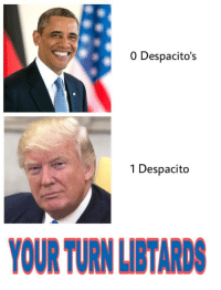 Libtard: 0 Despacito's  1 Despacito  YOUR TURN LIBTARDS