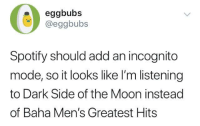 me irl: 0:  eggbubs  @eggbubs  Spotify should add an incognito  mode, so it looks like I'm listening  to Dark Side of the Moon instead  of Baha Men's Greatest Hits me irl
