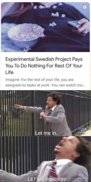 Crazy, Dank, and Life: 0  Experimental Swedish Project Pays  You To Do Nothing For Rest Of Your  Life  Imagine: For the rest of your life, you are  assigned no tasks at work. You can watch mo...  Let me in.  LET ME IIINTIN  mgtlip.com Sweden is something that makes you go crazy and happy in the same time by L_ryuzaki_L MORE MEMES
