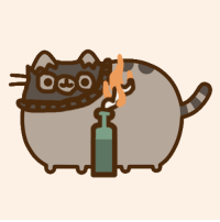 I made a black bloc pusheen. CHEERS!: 0  so I made a black bloc pusheen. CHEERS!