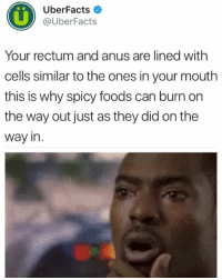 Girl Memes, Spicy, and Can: 0%  UberFacts  @uberFacts  Your rectum and anus are lined with  cells similar to the ones in your mouth  this is why spicy foods can burn on  the way out just as they did on the  way in. Fs Why is @uberfacts like this 😂
