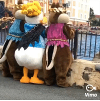 9gag, Disneyland, and Memes: 0  Vimo Bumps up if you've done this with your mates 🐥 Follow @9gag - - 📷dxoxoemi   Twitter - - 9gag disneyland