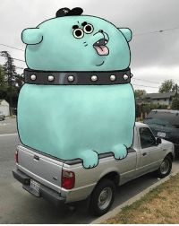 Cute, Funny, and Memes: 00 Saw this pup in the back of a truck on my way back home. It looked pretty fierce so I kept my distance but it had a funny bark, sounded like a duck's quack. cute puppy guarddog dogsofinsta