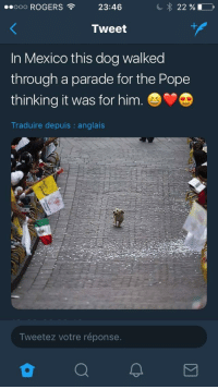 "Pope Francis, Mexico, and Wholesome: 00000 ROGERS  23:46  Tweet  1  In Mexico this dog walked  through a parade for the Pope  thinking it was for him.V  Traduire depuis : anglais  Tweetez votre réponse. <p>Wholesome parade via /r/wholesomememes <a href=""https://ift.tt/2GE6AcS"">https://ift.tt/2GE6AcS</a></p>"