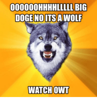 remember, these memes are NOT ironic: 000000HHHHLLLLL BIG  DOGE NOOITSA WOLF  WATCH OWT remember, these memes are NOT ironic