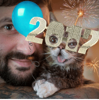 No one better to start the new year with than Lil Bub!: 0090  0000,00,0000  ①⑦DD  tTi  0,0 0,0 0,0  OOOOOOO  00000000  るりり  900 No one better to start the new year with than Lil Bub!