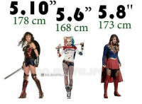 01056 5738 178cm 168cm 178 Cm 168 Cm 173 Cm ɺ' 5 17 Hey Puddin S Which One Are You Closest Too Comment Bellow Harleyquinn Suicidesquad Joker Harleyandjoker Harleyquinnisagoddess Harleyquinnandjoker Harleyquinniskickass
