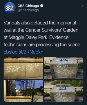 What makes someone want to deface a cancer memorial: 02 CBS Chicago  @cbschicago  LL  CBSChicago.com  Vandals also defaced the memorial  wall at the Cancer Survivors' Garden  at Maggie Daley Park. Evidence  technicians are processing the scene.  cbsloc.al/2RNcbkh What makes someone want to deface a cancer memorial