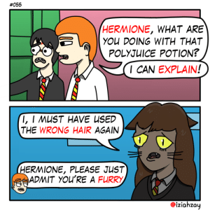 Cats, Hermione, and Hair:  #055  HERMIONE, WHAT ARE  YOU DOING WITH THAT  POLYJUICE POTION?  I CAN EXPLAIN!  I, I MUST HAVE USED  THE WRONG HAIR AGAIN  1  1  HERMIONE, PLEASE JUST  ADMIT YOU'RE A FURRY  iziahzay Or auditioning for the new Cats musical [OC]
