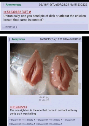 Bad, Anonymous, and Chicken: 06/18/19(Tue)07:24:29 No.51230229  Anonymous  >51230182 (OP) #  Unironically, can you send pic of dick or atleast the chicken  breast that came in contact?  >51231958 #  06/18/19(Tue)12:01:28 No.51231958  Anonymous  chick2.jpg  27 KB JPG  >>51230229 #  The one right on is the one that came in contact with my  penis as it was falling  51232013# >>51232062 #>>51232288# >»51232292# »51232352 #  51232376 #>51232472 # »51233838 Don't know if it's cringe worthy but I think it's pretty bad..