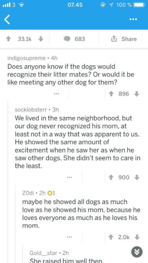 Unexpected wholesome: 07.45  33.1k  683  Share  indigosupreme 4h  Does anyone know if the dogs would  recognize their litter mates? Or would it be  like meeting any other dog for them?  896  socklobsterr 3h  We lived in the same neighborhood, but  our dog never recognized his mom, at  least not in a way that was apparent to us.  He showed the same amount of  excitement when he saw her as when he  saw other dogs. She didn't seem to care in  the least.  T 900  ZOdi 2h 1  maybe he showed all dogs as much  love as he showed his mom, because he  loves everyone as much as he loves his  mom  12.0k  Gold star 2h  She raised him well then Unexpected wholesome