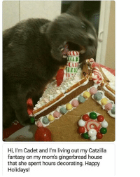 Submitted by @kellkellarina cat cats catsofinstagram kitten kittens kitty kitties funny dog fun dogs dogsofinstagram doggy doggie doggies funnydog pets gato petsofinstagram animal cute puppies pup puppy katze puppiesofinstagram cat_shaming catstagram pet kittensofinstagram: 0D  CTI  Hi, I'm Cadet and I'm living out my Catzilla  fantasy on my mom's gingerbread house  that she spent hours decorating. Happy  Holidays! Submitted by @kellkellarina cat cats catsofinstagram kitten kittens kitty kitties funny dog fun dogs dogsofinstagram doggy doggie doggies funnydog pets gato petsofinstagram animal cute puppies pup puppy katze puppiesofinstagram cat_shaming catstagram pet kittensofinstagram