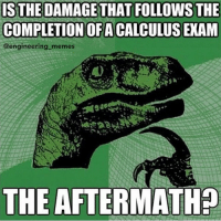 Is it❓ 😆😂 science math physics thermodynamics calculus mathematics technology structures software statics dynamics fluidmechanics heattransfer matlab cad computer programmer electricity engineering engineer: IS THE DAMAGE THAT FOLLOWS THE  COMPLETION OF A CALCULUS EXAM  @engineering memes  THE AFTERMATHp Is it❓ 😆😂 science math physics thermodynamics calculus mathematics technology structures software statics dynamics fluidmechanics heattransfer matlab cad computer programmer electricity engineering engineer