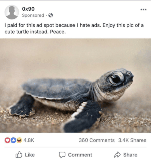 Cute, Facebook, and Good: 0x90  Sponsored S  l paid for this ad spot because I hate ads. Enjoy this pic of a  cute turtle instead. Peace  4.8K  360 Comments 3.4K Shares  Like  Comment  Share Good Facebook