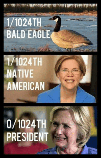 Memes, Native American, and American: 1/1024TH  BALD EAGLE  1/1024TH  NATIVE  AMERICAN  0/1024TH  PRESIDENT
