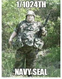 Navy: 1/1024TH  NAVY SEAL