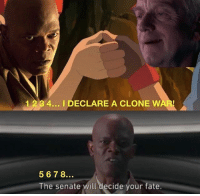 Memes, Best, and Fate: 1 234... I DECLARE A CLONE W  567 8  The senate will decide your fate. 🔹Credit to whoever made this defiantly one of the best🔹