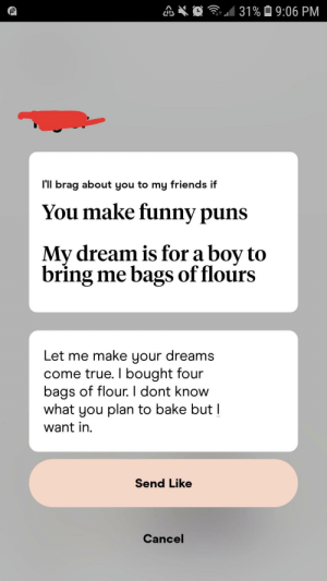 And now we wait...(hinge): 1 31% Ô 9:06 PM  l'll brag about you to my friends if  You make funny puns  My dream is for a boy to  bring me bags of flours  Let me make your dreams  come true. I bought four  bags of flour. I dont know  what you plan to bake but I  want in.  Send Like  Cancel And now we wait...(hinge)