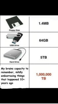 Brains, Drive, and Usb: 1.4MB  Floppy Disk  64GB  USB Drive  5TB  Hard Drive  My brains capacity to  remember, mildly  embarrasing things  that happened 10+  years ago  1,000,000  ТВ