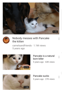 Being Alone, Fuck You, and Fuck: 1:52  Nobody messes with Pancake  the kitten  camelsandfriends 1.1M views  5 years ago   Pancake is a natural  born killer  5 years ago 63K views  0:16   Pancake sucks  5 years ago 27K views  1:08 Ill fuck you up leave pancake alone