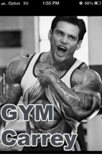 Jim took stims and went to the gym with his gym partner who is also called Jim.   Jim Memes.   Gym Memes: 1:55 PM  58%  in-- Optus 3G  GYRMI  Carrey Jim took stims and went to the gym with his gym partner who is also called Jim.   Jim Memes.   Gym Memes