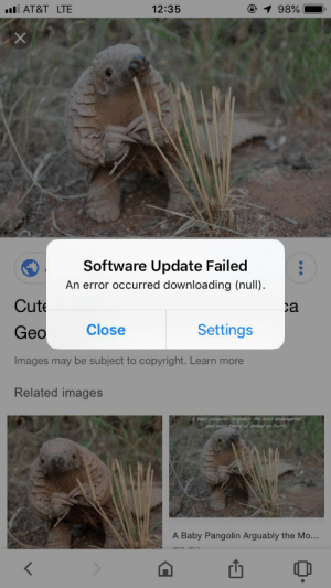 So...apparently it failed to download nothing?: @ 1 98%  .l AT&T LTE  12:35  Software Update Failed  An error occurred downloading (null)  Cute  ca  Close  Settings  Geo  Images may be subject to copyright. Learn more  Related images  baby pangolin. Argably the most endongered  and least heard of animal on Earth  A Baby Pangolin Arguably the Mo...  < So...apparently it failed to download nothing?