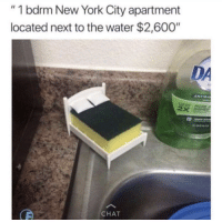 "Blackpeopletwitter, New York, and Chat: ""1 bdrm New York City apartment  located next to the water $2,600""  DA  ANTIBA  HORE  CHAT <p>Six people will split the rent (via /r/BlackPeopleTwitter)</p>"